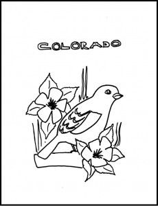 States Birds and Flowers coloring pages