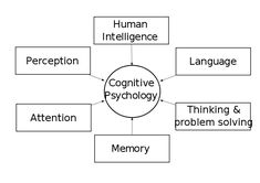 four paradigms of cognitive psychology Compare and contrast 5 major paradigms of psychology compare and contrast the behaviourist perspective with one other major approach in psychology psychology is a human science, which aims to describe and understand behaviour, emotion and mental processes of the mind.
