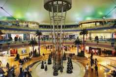 Go out shopping in Abu Dhabi marina mall