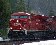 Canadian Pacific Train chugging its way through the Canadian Rockies. Banff National Park, Alberta.