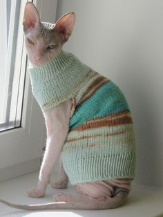 Cat Sweaters, Summer Sweaters, Cute Hairless Cat, Sphynx Cat Clothes, Color Shades, Cotton Sweater, Creative Inspiration, Cats And Kittens, Your Pet