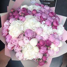 Luxury Flowers, My Flower, Fresh Flowers, Beautiful Flowers, Flowers Nature, Beautiful Flower Arrangements, Floral Arrangements, Peonies Bouquet, Bouquets
