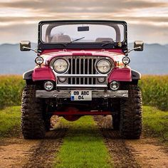 Just a nice pic of an old Jeep
