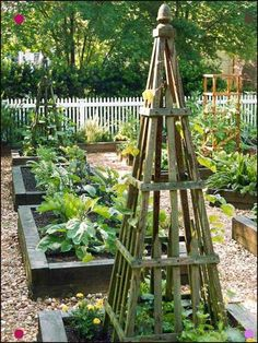 Grow a Vegetable Garden in Raised Beds Spread mulch over the paths between your raised vegetable garden beds, and your feet will stay clean—no matter how wet the weather. Because you won't walk on the raised vegetable garden beds, y Potager Garden, Veg Garden, Vegetable Garden Design, Edible Garden, Vegetable Gardening, Organic Gardening, Garden Boxes, Gravel Garden, Garden Tips