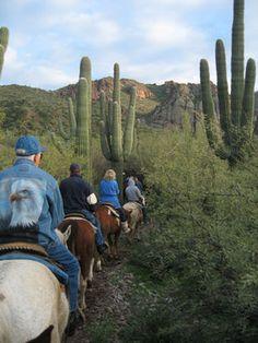 Saguaro Lake Trail Rides