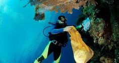 Caribbean Beach Destination: Alluring Aruba