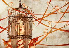 Birds by moonywolf.deviantart.com on @deviantART