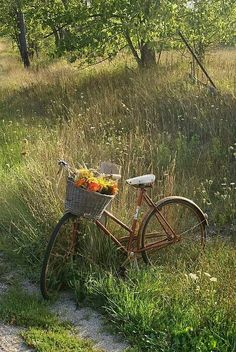 Country Living ~ take a bike ride with nature. Country Life, Country Living, Country Charm, Country Roads, Fairytale Garden, Old Bikes, Bike Art, East Sussex, Vintage Bicycles