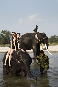 #elephants #Jungle Lodge #Chitwan #Nepal #TigerTops // photo by Kira Brandt