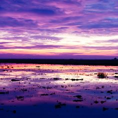 """""""Llano Seco Wildlife Refuge (2 of 3)"""" - A Giclée Print by Christopher Cuttriss  #inprnt #print #art #Photography $20.00 #pink #purple #nature #sunset #home #decor"""