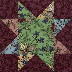 Week 30:  Floral Trails.. Stars in a Time Warp 2015 quilt along with Barbara Brackman