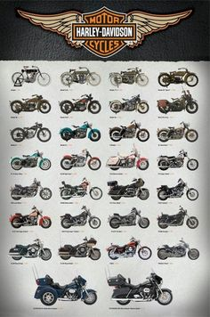 Harley Davidson Motorcycles Poster 30 Evolution 24x36 Motorcycle 1903 2013