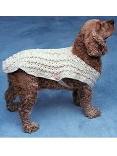Doggie Duds - Aran  Sizes for toy-size, small, medium and large dogs. Crocheted using sport and worsted yarn. Skill Level: Easy  Designed by Kathleen Power Johnson  free pdf from freepatterns.com  Gotta love this!