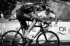 Fans of La Vuelta  Cheers, cheers, and more cheers for Chris Froome on the Mirador de ɉzaro. Photo: BrakeThrough Media   VeloNews.com