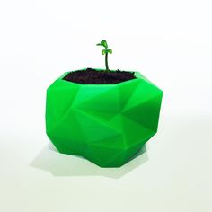 Geometric seedling planter 3D printed in Green ABS why waste your citrus seeds when you can bring new life to the world #3dprinting #3dhubs #3dprint #green #gardening #raising #nurture #nature #reuse #style #design #geometric #planter #nofilter by np_creative