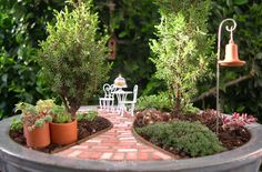MINIATURE GARDENS:  I'm in love!!  If we had one on the porch or back patio I would smile everytime I saw it.  <3