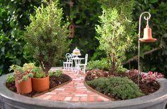 miniture gardens | Indoor Mini Gardens | The Mini Garden Guru - Your Miniature Garden ...