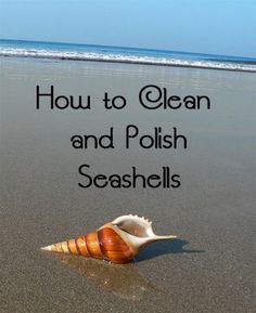 Fantastic Cleaning hacks are offered on our internet site. look at this and you wont be sorry you did. Deep Cleaning Tips, House Cleaning Tips, Cleaning Hacks, Diy Hacks, Cleaning Recipes, Beach Crafts, Diy Crafts, Creative Crafts, Rustic Crafts