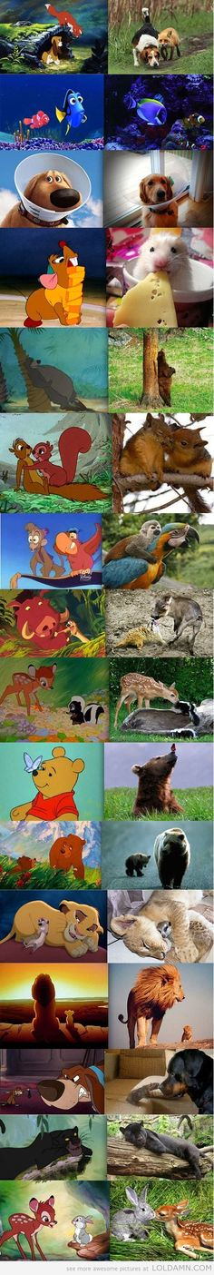 Animated & Real Life....