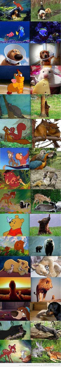 Animated & Real Life....