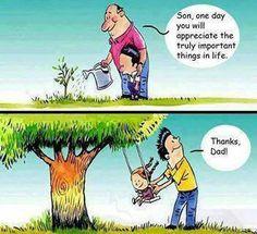 Plant trees..