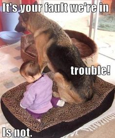 this is going to be Andrea and Cujo!!!!