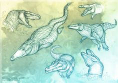 Alligators sketch by SpIgHy.deviantart.com on @deviantART