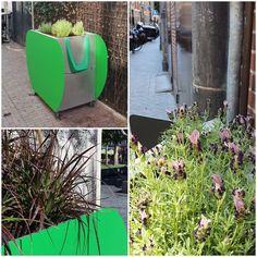 - Das niederländische Unternehmen GreenPee hat in Amsterdam acht mit Hanf gefüllte nachhaltige Urinale installiert, um das Wildpinkel-Problem der Stadt ... Amsterdam, Outdoor Decor, Plants, Home Decor, Hemp, Business, City, Decoration Home, Room Decor