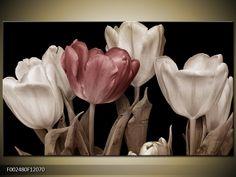 Obraz Tulipány - hnědá