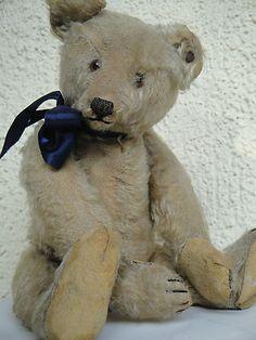 Expressive Antique Steiff Teddy Bear 1915 Mohair Hunchback Bear