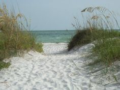 About Sand Key, Wedding Ceremonies on Sand Key Beach, Clearwater Florida