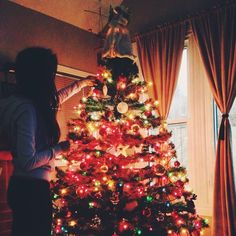 we put up the tree today  #christmas #holidays #christmastree #Padgram