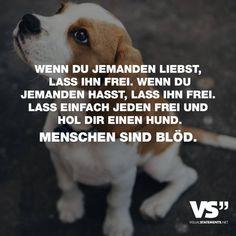 Das Mir Mein Hund Das Liebste Sei Sagst Du Oh Mensch Sei Sünde