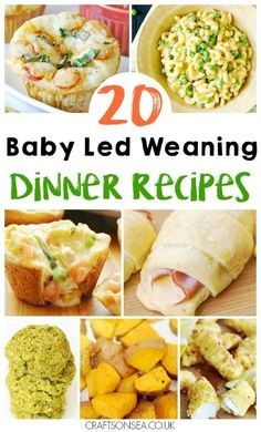 Need inspiration quickly? We've got 20 baby led weaning dinner ideas suitable for the whole family and perfect for finger foods too! via @craftsonsea