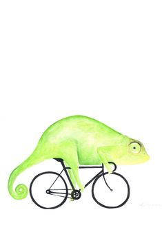 Animal Illustrations, Bullet Journal, Friends, Animals, Bicycle, Amigos, Animales, Animaux, Animal