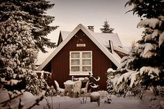 house, red, snow, winter