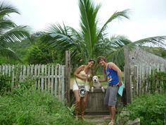 Jules, the big friendly pitbull at Canoa, Ecuador