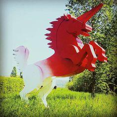 Where the wild unicorns grow #unicorn #weekend  #german  #schwäbischgmünd #summer #bike http://www.madziala.pl