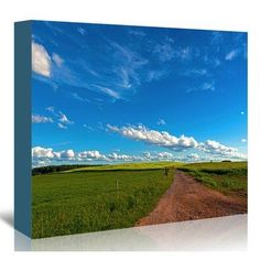 East Urban Home 'Trail Fields Sky Clouds Summer' Photographic Print on Canvas Size: