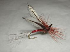 Agostino_Roncallos_Red_spinner_1