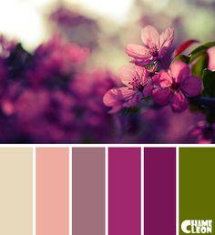 Color Palette, flowers, purple.