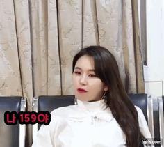 "Chaebae :""Im 159cm =P "" Laos Thailand, Chaeyoung Twice, Minatozaki Sana, Hirai Momo, One In A Million, Nayeon, Girl Crushes, Super Cute, Fandom"