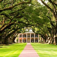 Great River Road, Louisiana | Go to the most iconic places on earth and enjoy the diversity that you can find, since culture to food! #travel #traveldestination #traveljournal