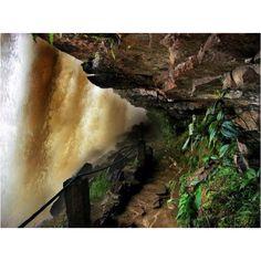 Salto El Sapo desde la parte de abajo - Parque Nacional Canaima - Estado Bolivar - Venezuela