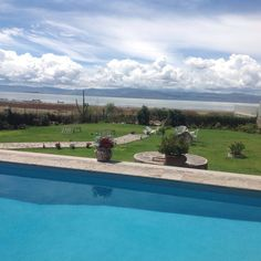 Housesitting assignment in Guadalajara, JAL, Mexico