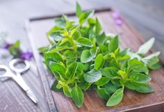 Comment utiliser la marjolaine en cuisine ? + voir recettes