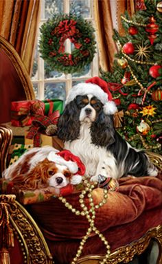 Cavalier King Charles Spaniel Christmas Holiday Cards are 8 x 5 and come in packages of 12 cards. One design per package. All designs include envelopes, your personal Christmas Scenes, Christmas Animals, Christmas Dog, Christmas Pictures, Merry Christmas, King Charles Dog, King Charles Spaniel, Cavalier King Charles, Illustration Noel