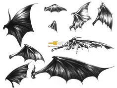 how to draw anime demon wings drawing fine art - devil wings drawing Tattoo Sketches, Art Sketches, Kopf Tattoo, Demon Wings, Bat Wings, Wings Drawing, Geniale Tattoos, Dark Tattoo, Angel And Devil