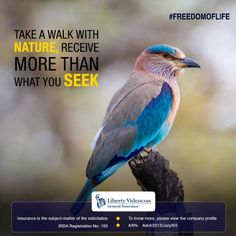 Visit the park with your family and enjoy nature in its purest form. #FreedomOfLife