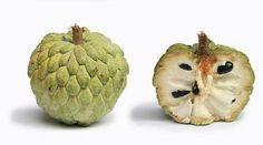 Zoetzak (Annona squamosa), Suikerappel, Kaneelappel of Schubappel from Suriname